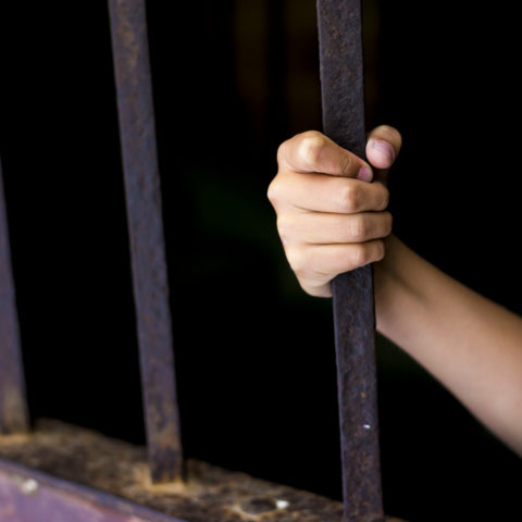 """""""Looking Up"""" Excerpt: Caged? Child Abuse?"""