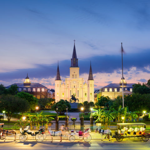 The French Quarter: A Love/Hate Relationship